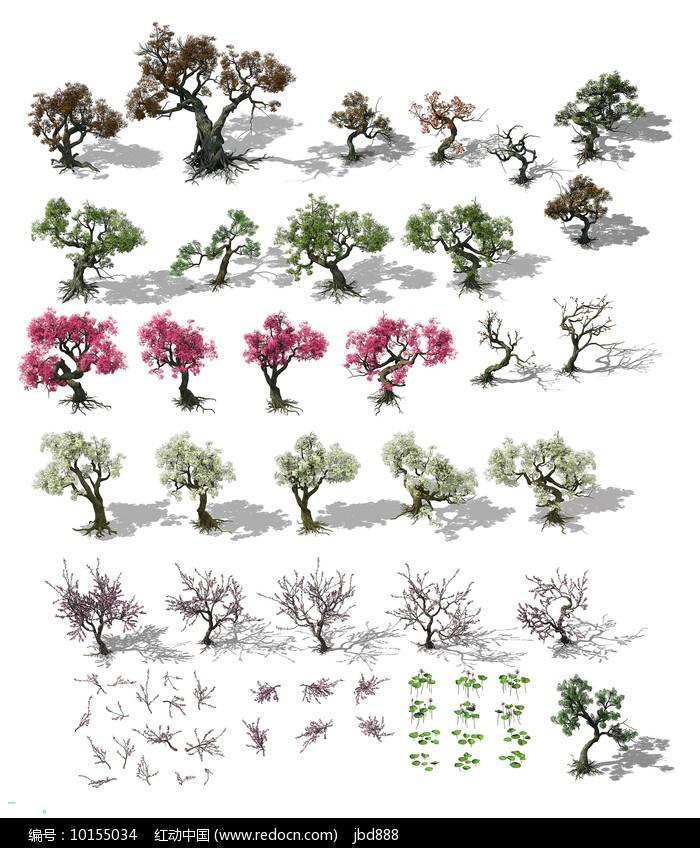 3dmax模型-精美树木合集图片