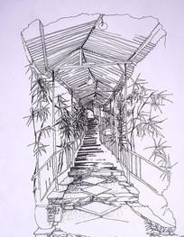 竹子廊架钢笔画