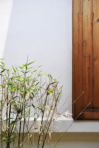 门边的一丛竹子