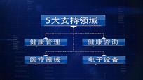 科技企业架构信息文字AE模板