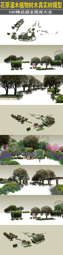花草灌木植物树木真实树模型