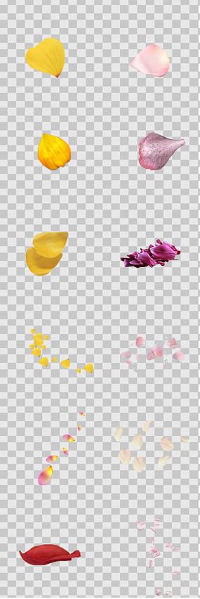 飘散花瓣素材