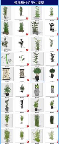 景观绿竹竹子su模型