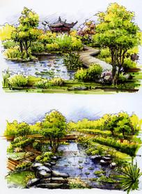 荷塘亭子彩色手绘