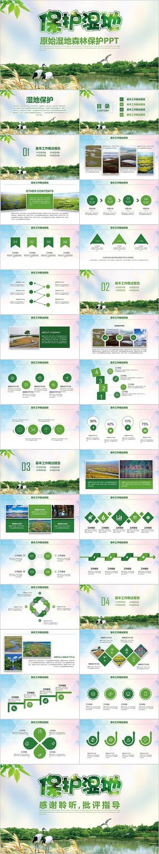 绿色保护湿地生态环境造林湿地森林ppt
