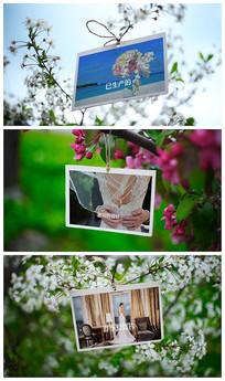 时尚清新树枝上照片展示视频模板