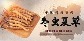 冬虫夏草宣传海报