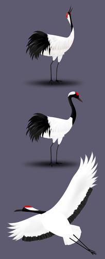 中国风丹顶鹤手绘