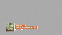 12款商务公司字幕条PR模板