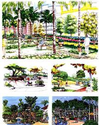 小区绿地景观手绘