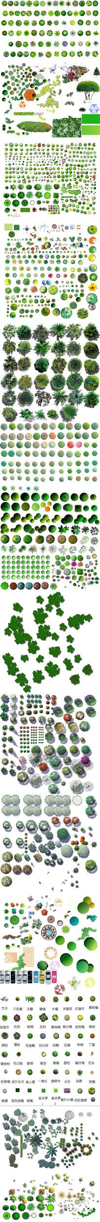 小清新彩色总平面彩植物PSD分层后期