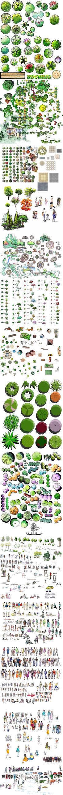 小清新彩色总平面彩植物人物PSD后期