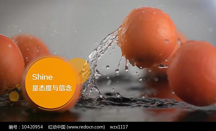 活力字幕条动画视频模板图片