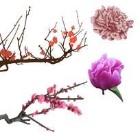 原创手绘梅花桃花牡丹花装饰元素5