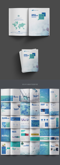 大气生物科技画册设计