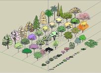 SU素材-植物图片