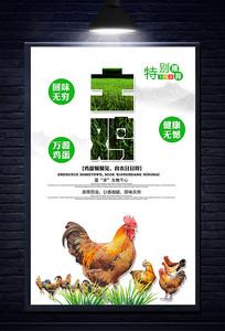 简约农家土鸡海报设计