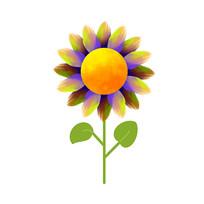 色彩斑斓的向日葵
