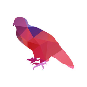 多边形色块动物剪影鸟类