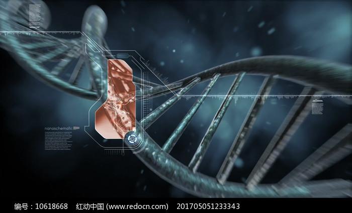 DNA双螺旋结构视频素材图片