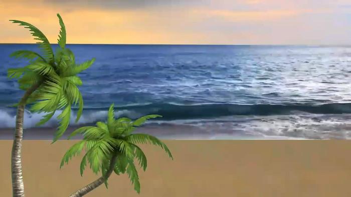 海滩椰子树视频素材