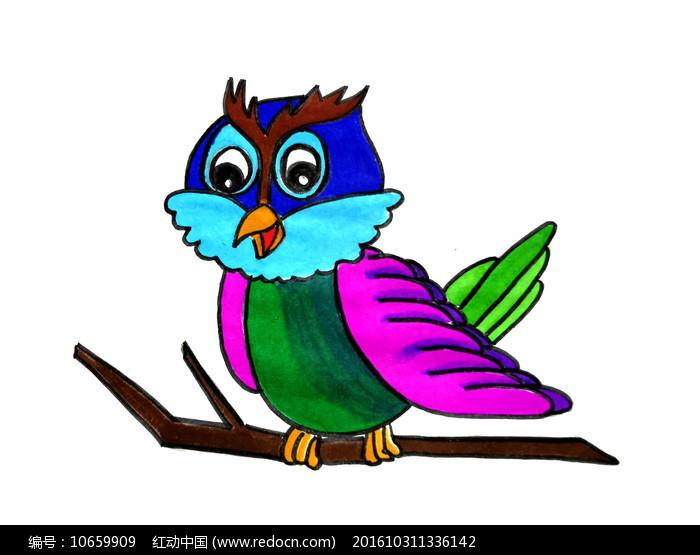 卡通彩色猫头鹰PNG图片
