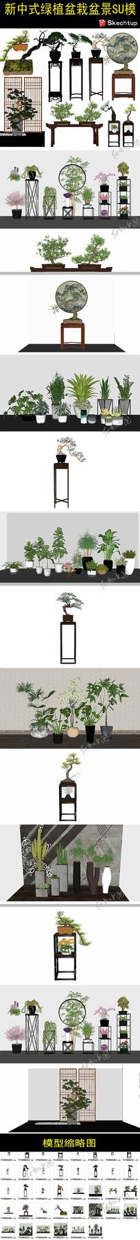 新中式绿植盆栽盆景SU模型