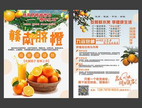 赣州脐橙DM单设计