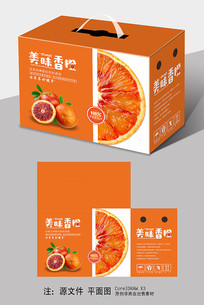 血橙包装设计手提箱包装