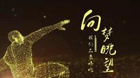 年会开场金色粒子励志人物颁奖开场pr视频模板