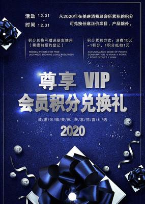 尊享VIP积分兑换海报设计