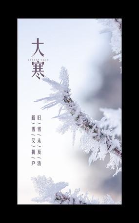 二十四节气大寒海报