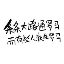 网络热词心灵毒鸡汤文案