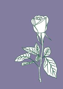 玫瑰花线稿