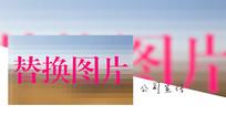 酷炫企业个人写真图片文字展示宣传PR模板