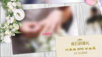 浪漫植物花朵婚礼婚庆相册AE模板