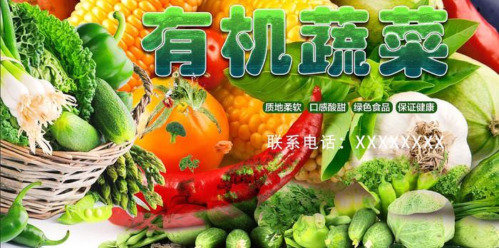 高端大氣綠色有機蔬菜海報