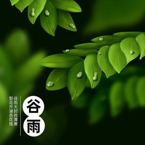 原创二十四节气谷雨树叶