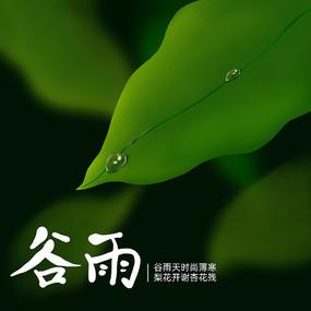 原创二十四节气谷雨叶子
