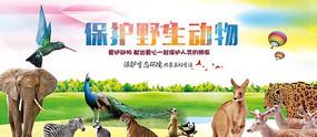 高端大气蓝色保护动物宣传海报