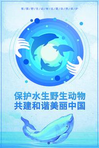 水生野生动物保护科普宣传月海报