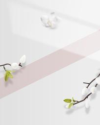 淡雅光影花朵背景图