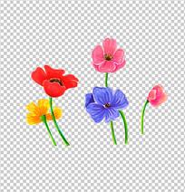 手绘彩色花朵PNG