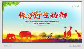 简约保护野生动物宣传海报设计