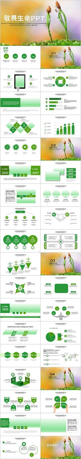 绿色敬畏生命唯美植物生长发芽PPT