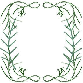 简约手绘植物花草边框 底框背景