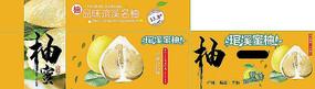 琯溪蜜柚包装