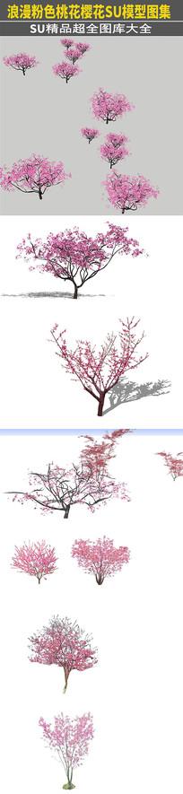 桃花粉红色植物花SU模型