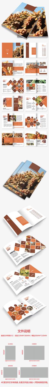 绿植家居产品画册多肉植物介绍画册设计