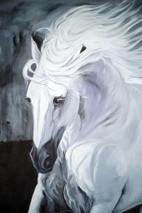 白色骏马头像玄关装饰画